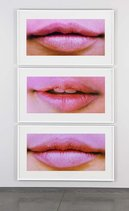 Ssa%20allegories%20of%20beauty%20(incomplete)%20lips%20(pink)_129_0